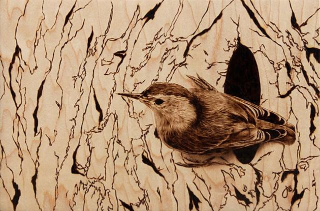 Julie Bender's Pyrography
