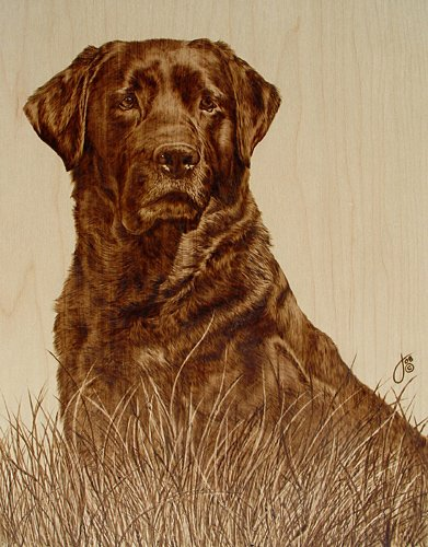 Julie Bender's Pyrography - The Awesomer