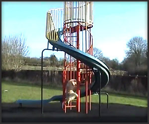 Self-Sliding Dog