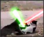 cat fight w lightsabers. Black Bedroom Furniture Sets. Home Design Ideas