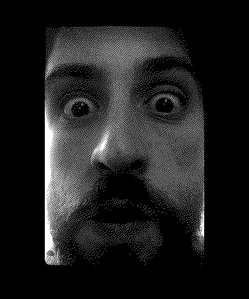 1-Bit Camera