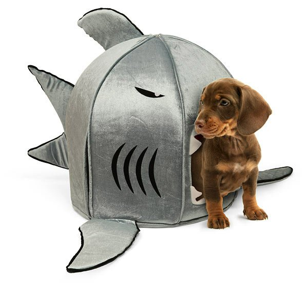 Shark Pet Bed - The Awesomer
