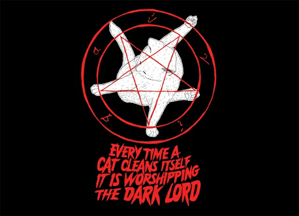 Every Time a Cat Cleans Itself…