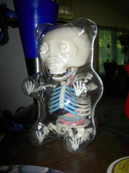 Gummy Bear Anatomy Toy