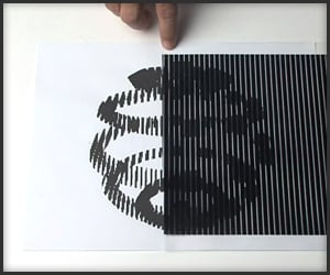 More Animated Optical Illusions