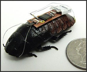 Remote-Controlled Roaches