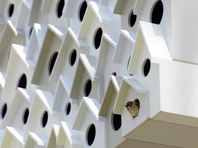 Bird-Apartment