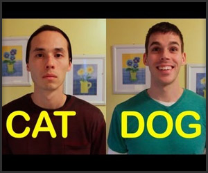 Cat-Friend vs. Dog-Friend
