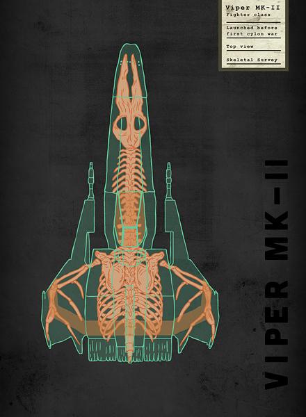 Spaceship Skeletal Surveys