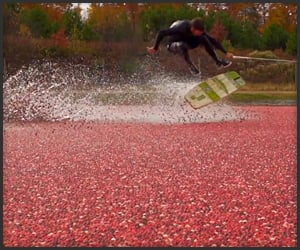 Cranberry Wakeskating