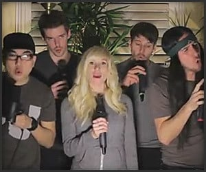 Knew You Were Trouble A Capella