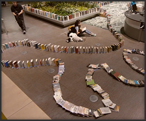 Longest Book Domino Chain