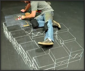 Donkey Kong/Escher 3D Chalk Art