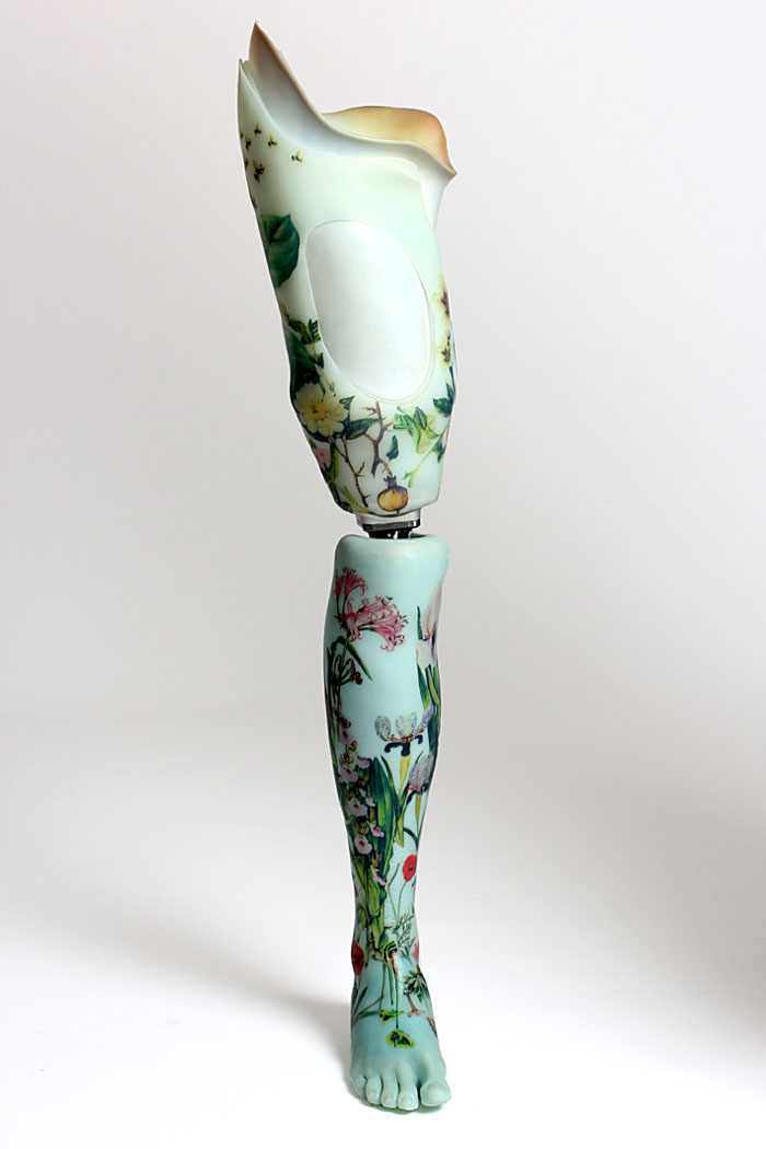 Alternative Limbs