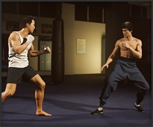 Bruce Lee vs. Donnie Yen