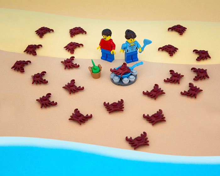 50 States of LEGO