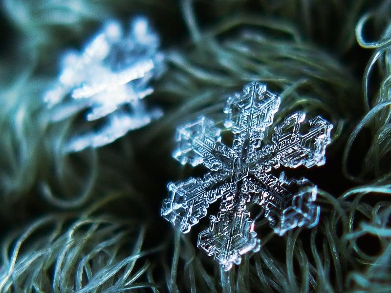 Alexey Kljatov: Snowflakes