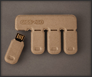 Gigs 2 Go Flash Drives