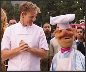 Swedish Chef vs. Gordon Ramsay