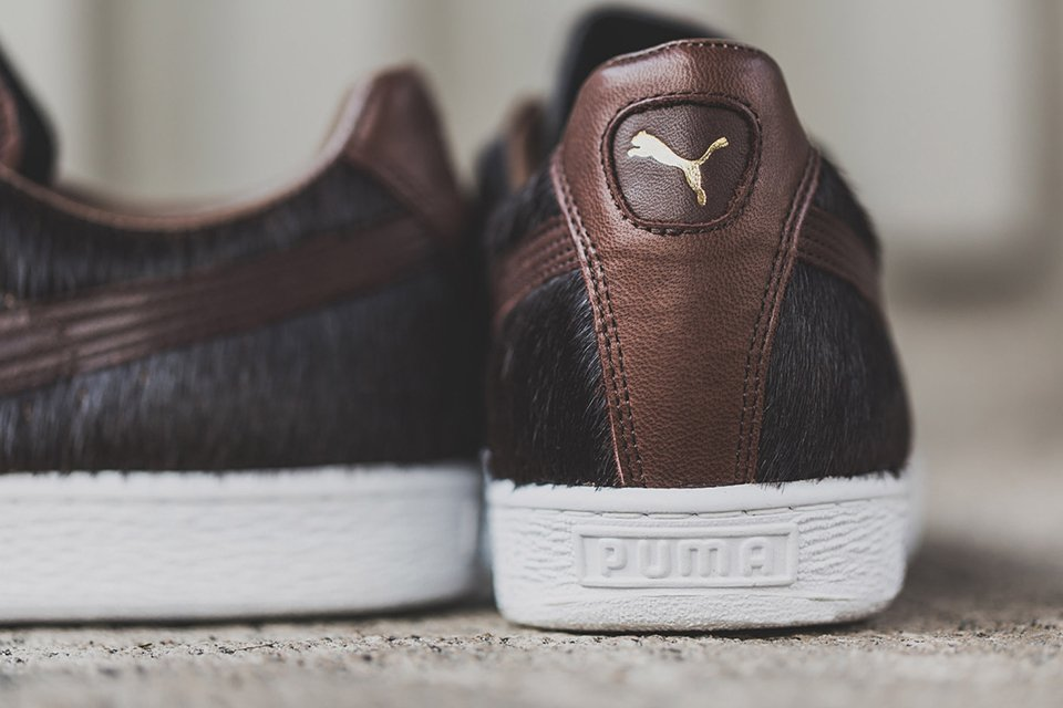 Puma Takumi Year of the Horse