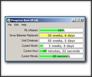 Progress Bars of Life