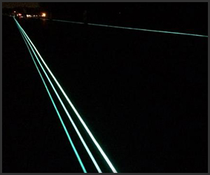 Glow-in-the-Dark Road Markers