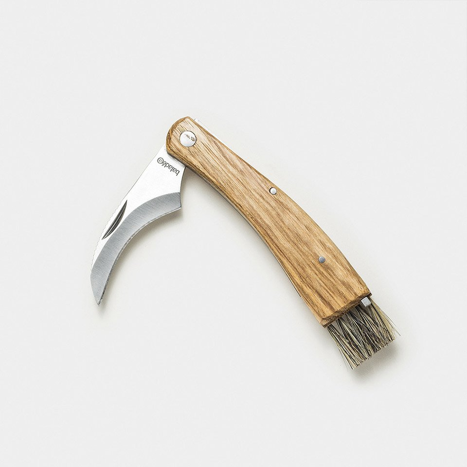 Mushroom Foraging Knife