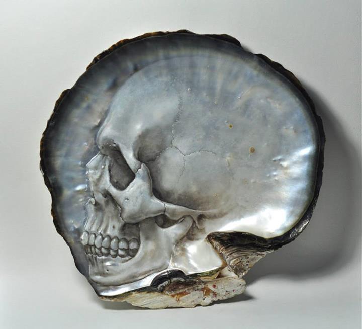 Shell Skulls