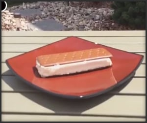 Heat Resistant Ice Cream Sandwich