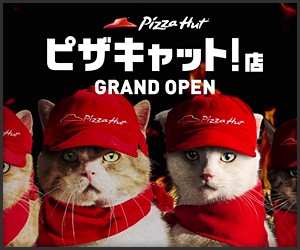Pizza Cat!