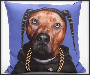 Snoop Dog Pillow
