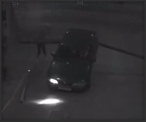 Car vs. Gate