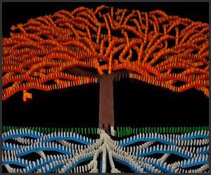 Domino Tree