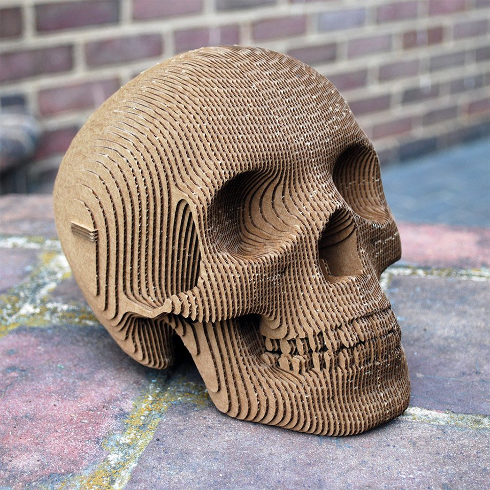 Vince the cardboard human skull the awesomer for 3d art sculpture ideas