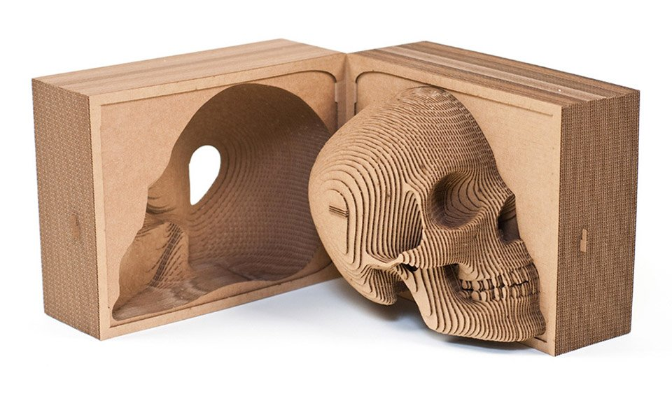 Vince The Cardboard Human Skull The Awesomer