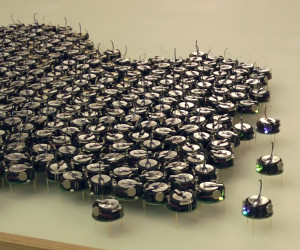 The Thousand Robot Swarm