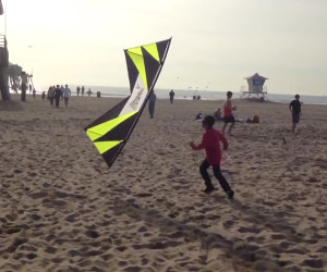 Kid vs. Kite