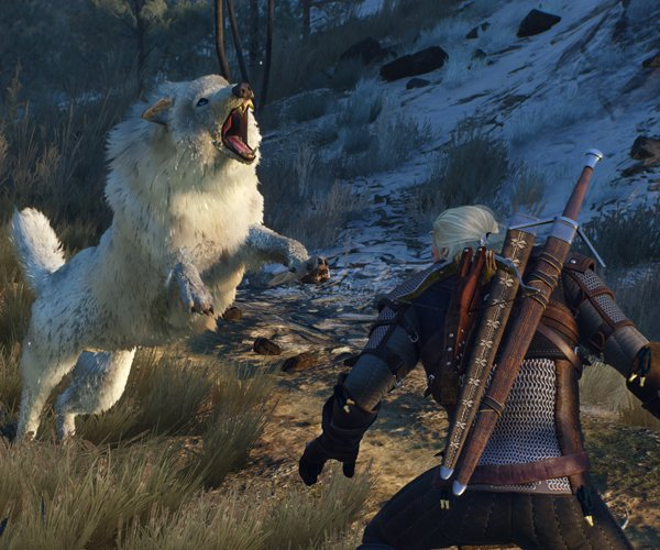 Witcher 3: Wild Hunt (Gameplay 3)