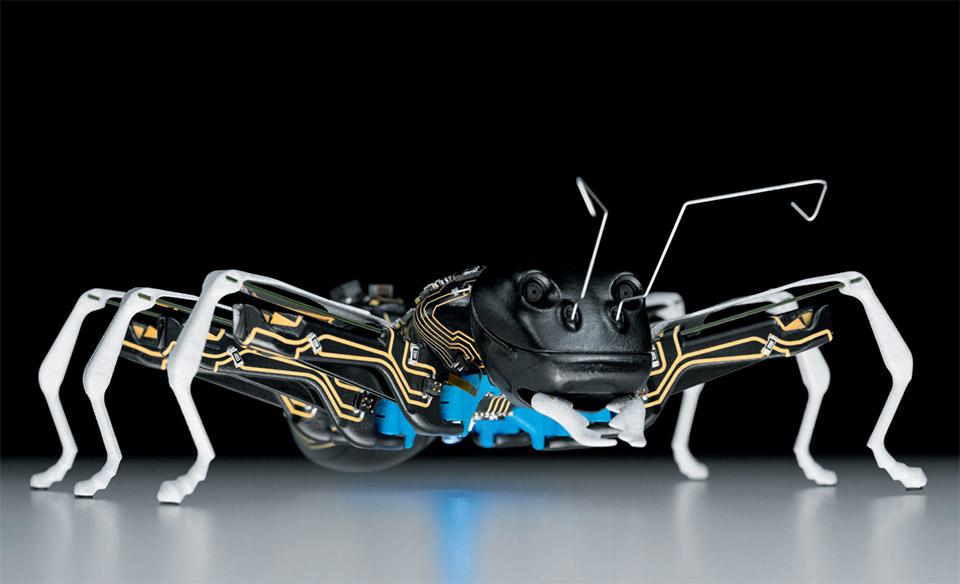 BionicANT Robots
