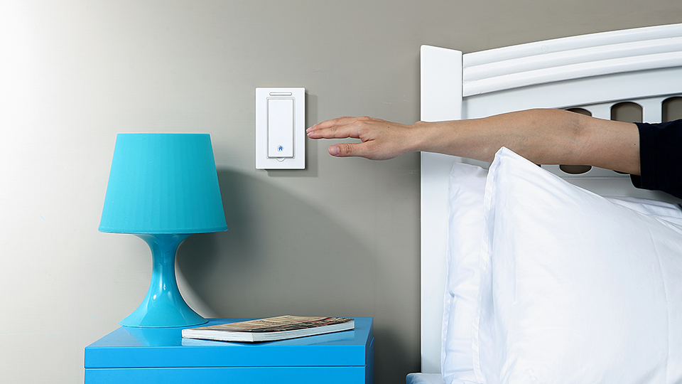 Gecko Movable Light Switch