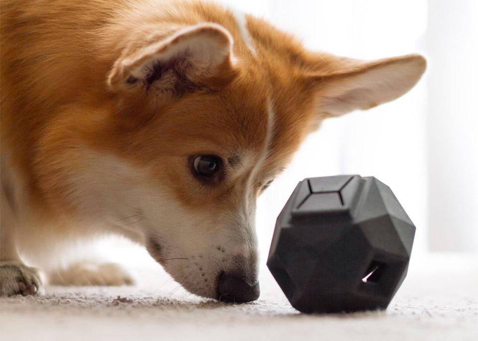 Odin Dog Toy