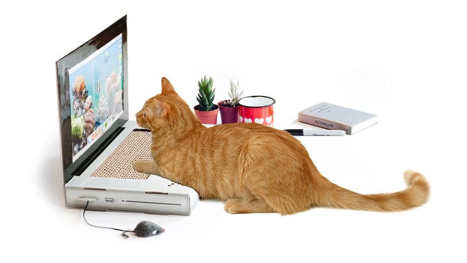 Scratching Post Laptop