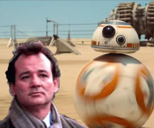 Bill Murray Awakens