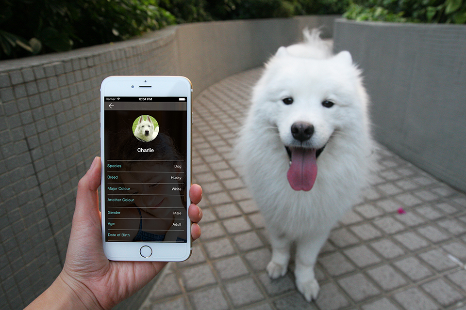 DOTT Smart Dog Tag