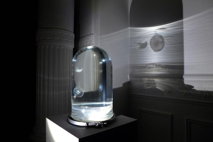 The Darwin Jellyfish Tank