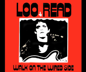 Loo Read: Walk on the Wired Side
