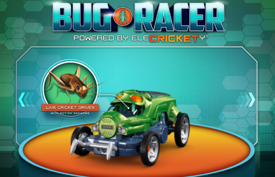 Bug Racers