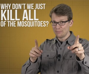 What If We Killed All Mosquitoes?