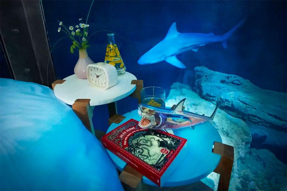 Airbnb Shark Room