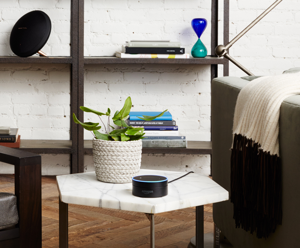Amazon Tap & Echo Dot